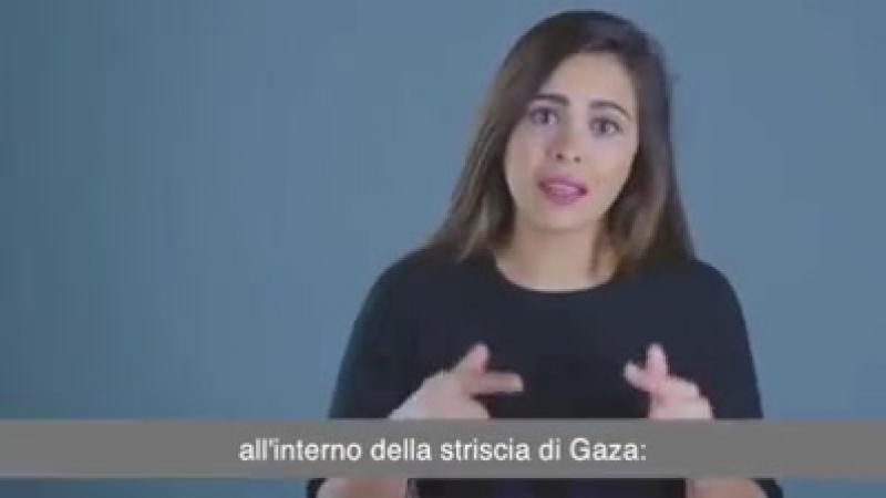 Video - Una nuova flotilla è partita da Svezia e Norvegia verso il Mediterraneo per rompere lassedio di GAZA. Le date italiane e
