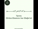 Шейх Шамиль Аш-Шафиий - Все происходит по Воле Аллаhа.mp4
