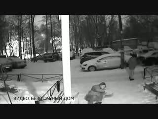 Два пьяных парня вырвали с корнем елку