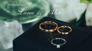 Lana – Alex — Hochzeit Highlights