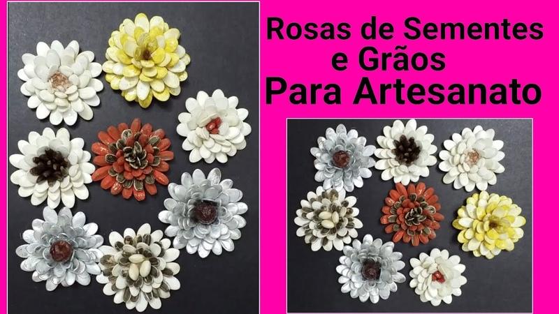 Rosas de Sementes e grãos para artesanato