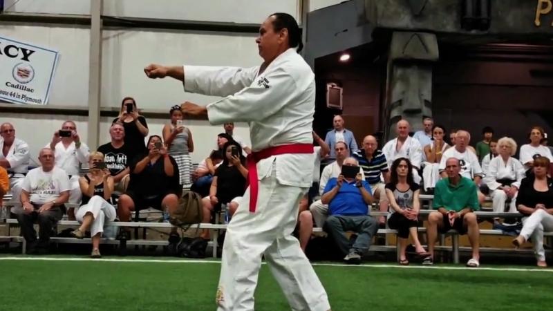 Jim Maloney _ 10th Dan Grand Master Uechi-Ryu Karate