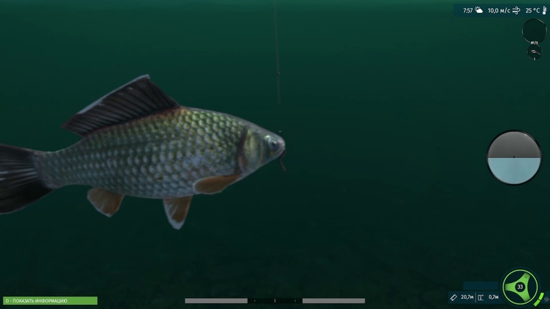 UltimateFishing 11 03 2019 14 08 05