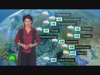 Утренний прогноз погоды на 24 октября