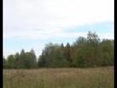 Акция Живи лес