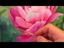 портреты цветов ,,Пион,, вариант 1