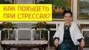 Как похудеть при стрессах Влияние кортизола на здоровье и вес тела Галина Гроссманн