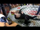 Submission Grappling 4 Взял чемпионство
