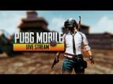 🔴Ташим в PUBG Mobile!🔴Рандом сквады🔴Winner Winner Chicken Dinner🔴