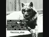 starie_pesni_9520181230050324521.mp4