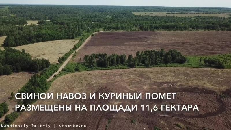 Источник зловония видео с места складирования навоза под Томском
