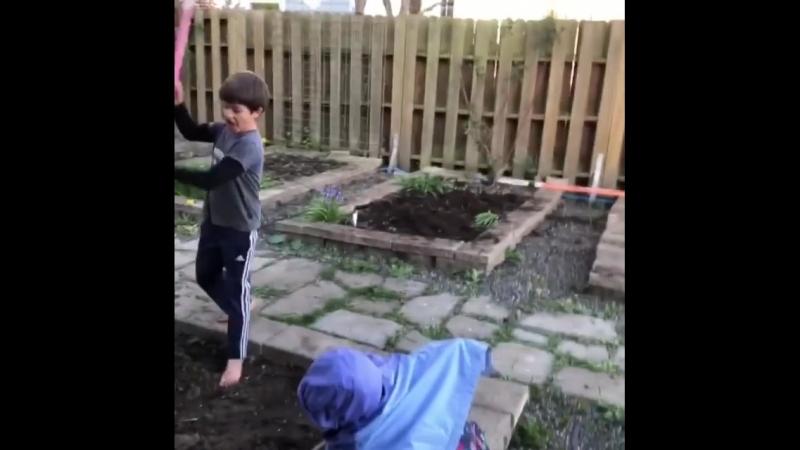 Огородники-садоводы