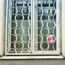 Диана Фастовская фото #46