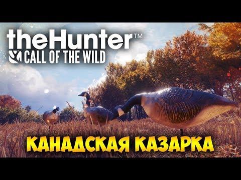 ОХОТА НА КАНАДСКУЮ КАЗАРКУ - The Hunter Call of the Wild (стрим) 15