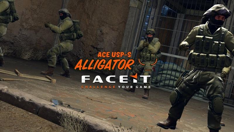 CSGO Alligator ╰_╯_ace_usp
