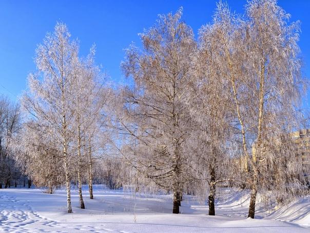 27 февраля в народном календаре - Кирилл Весноуказчик.