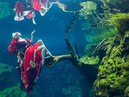 Cenote Diving with a Mexican Mermaid