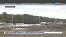 Новости на Россия 24 • Омск: черные лесорубы вышли на тропу войны