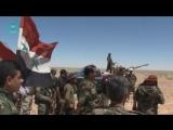 Сирия: ФАН публикует видео из освобожденной от ИГ пустыни