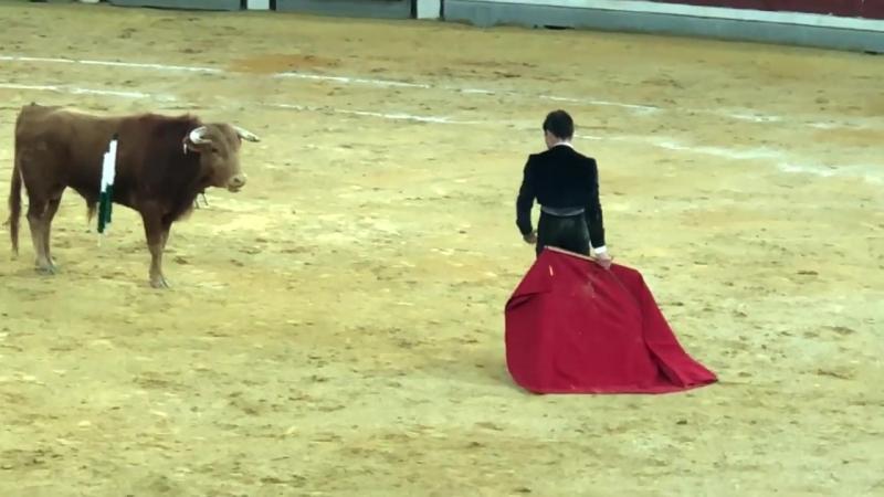 Juan Melchor. Jaén Festival 14.04.2018