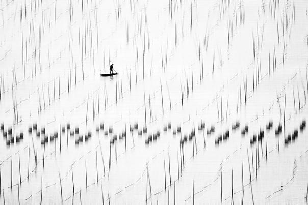Победители в категории «Монохром» фотоконкурса Siena International Photo Awards 2018 часть I