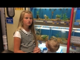 Israel Dillard checking out some fish at a pet store with Aunt Jenni Duggar-Augu.mp4