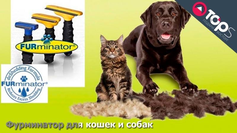Фурминатор для кошек и собак   Магазин TOPS