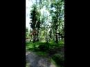 Лесной экстрим
