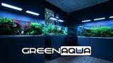 GREEN AQUA AQUASCAPING SHOWROOM AND AQUARIUM SHOP - END OF SUMMER 2018 - CINEMATIC