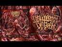 DISFIGUREMENT OF FLESH - HERBARIUM WITH GROTESQUE NECROTIC MALFORMATIONS [STREAM] (2014) SW EXCL