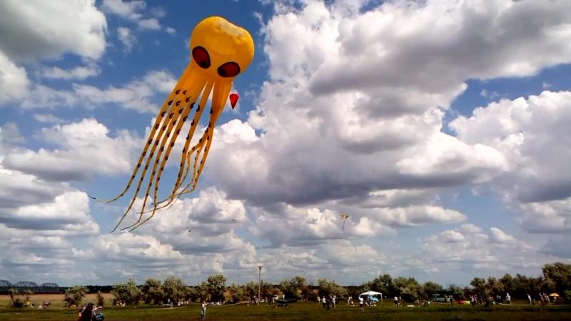 поляна2 \ Фестиваль воздушных змеев в селе Трихаты Tryhutty International Kite Festival 2018