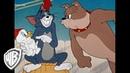 Tom y Jerry en Español Compilación clásica de dibujos animados Tom Jerry y Spike WB Kids