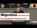 Dr. Gottfried Curio Migration löst hier das demografische Problem nicht