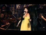 Symphonic Pop Orchestra - Wuthering Heights (von Kate Bush)