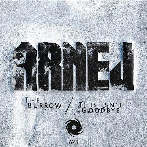 Arnej альбом The Burrow / This Isn't Goodbye