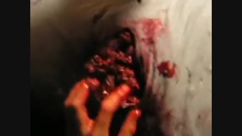 Cutting open my stomach - Special FX 240 x 320