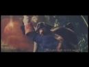 Реквизировано: видеоклип по пейрингу Капитан Гектор Барбосса/Капитан Джек Воробей: 【巴博萨26480克】Do the same things in another lifetime/在加勒比死不算什么之总有办法回来_.