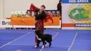 Цыганочка с выходом танец дрессированной собачки. Зоошоу экспофорум 2018 Санкт-Петербург.