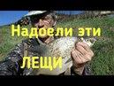 Летняя мормышка. Боковой кивок. Москва река. Успенское. Рыбалка Одинцово. Андрей Николаев.