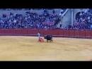 Curro Díaz Sevilla 08 04 2018 Segundo toro