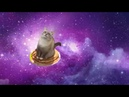 Blini Kot (cat jazz) - PonPonPon (Russian cover)