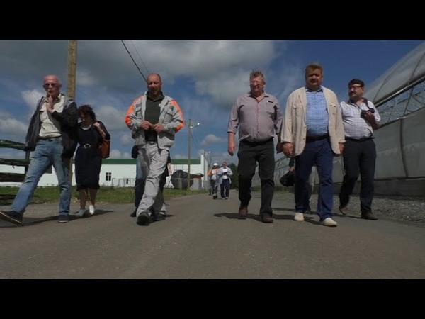 Лесопитомник АО «Монди Сыктывкарский ЛПК»