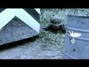 Diversant.1.02.seriya.HDTVRip.720p.GeneralFilm