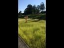 Яха в своей естественной среде обитания