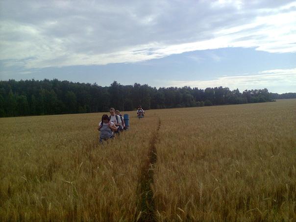 Пересекаем поле  ©Мария Куница https://vk.com/id5974921