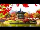 Китайская удивительная релакс музыка для комфорта и очищения пространства дома №