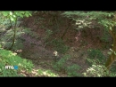 08.07.2018-Каменные загадки долины реки Малая Лаба.Россия,2014г.Дата-08.07.2018г.,0845мск.Источник-RTG-TV HD