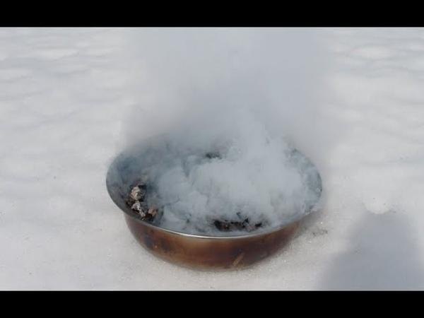 Дезинфекция курятника, теплицы русским маслом. Чудо средство.