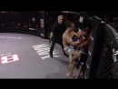 Bellator MMA Moment Pat Curran Knocks Out Joe Warren