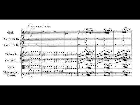 Mozart Symphony no 25 Takács Nagy